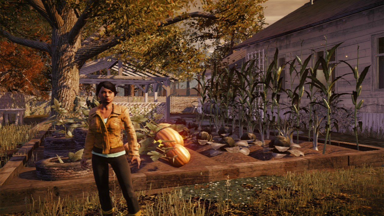 Jeu : State of Decay - Multi